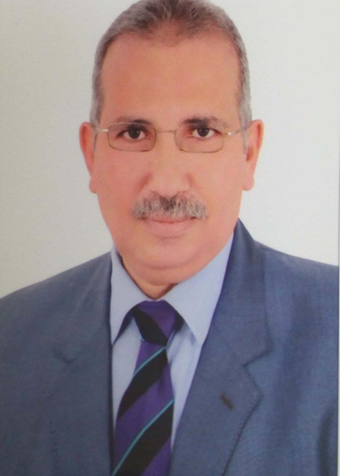 الدكتور عادل عامر يكتب: دور التنمية المستدامة في تطور الشعوب