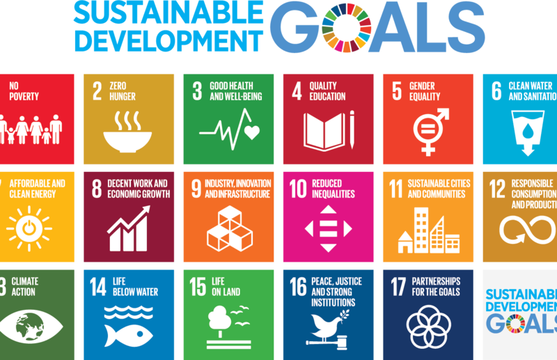 ESCWA: Egypt tops Arab countries in implementing SDGs