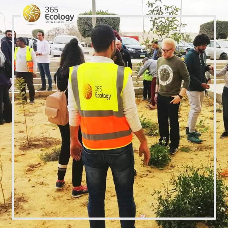ضمن مسئوليتها المجتمعية.. «365 إيكولوجي» تقوم بزراعة 100 شجرة للحفاظ على البيئة