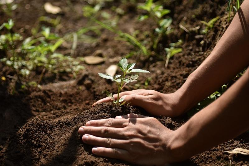 «ماستر كارد» تطلق تحالف «من أجل كوكبنا الثمين» لمواجهة التغير المناخي