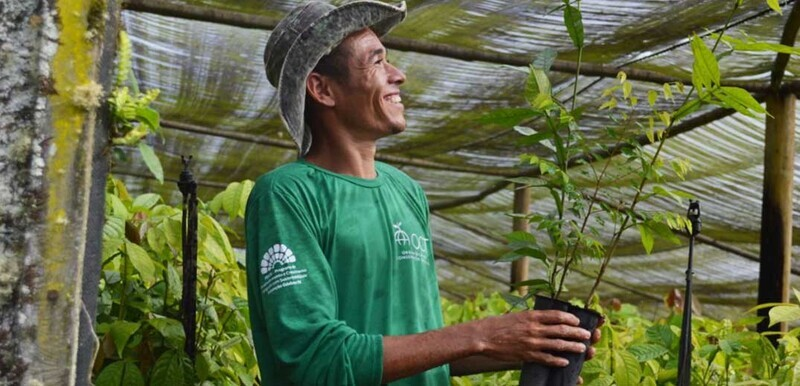 Mucilon's initiative lures people to join Nestle's 1 mln tree drive
