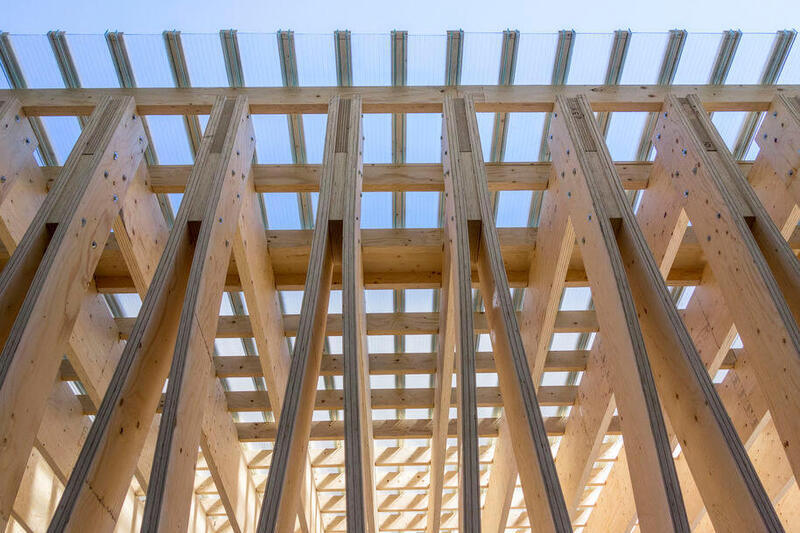 Shifting to wood in construction to halve CO2 emissions