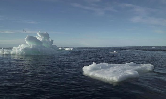 Greenhouse gas emissions transforming the Arctic into 'an entirely different climate'