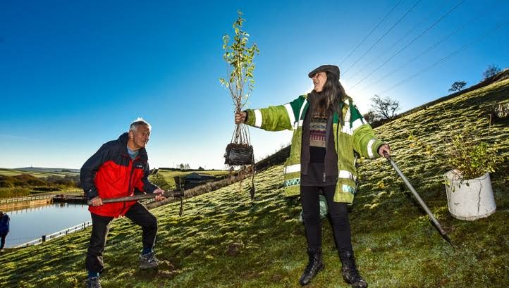 UK to plant 800,000 trees under £40 m green recovery projects