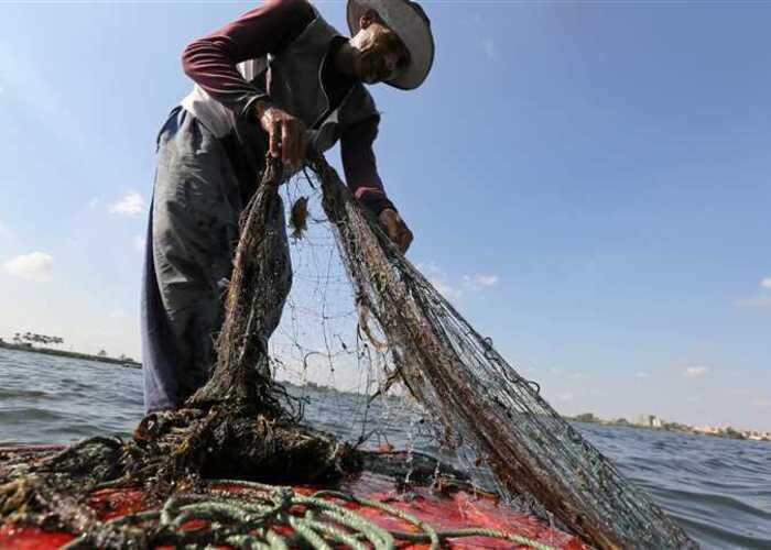«التضامن»: رصد ١٥٠ مليون جنيه لتوفير مشروعات التمكين الاقتصادي لصغار الصيادين