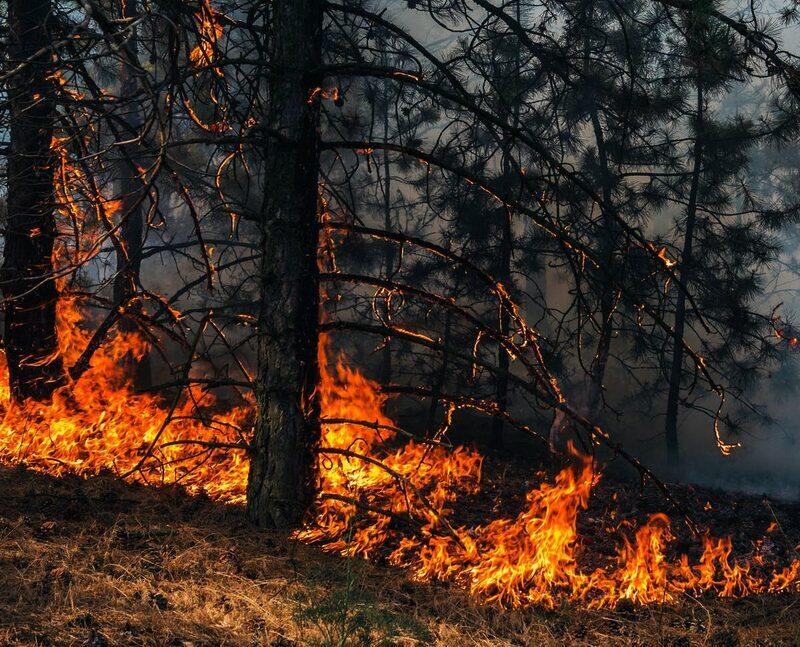 قادة أوربيون: حاجة ملحة لاتخاذ إجراءات عاجلة لمعالجة أزمة المناخ